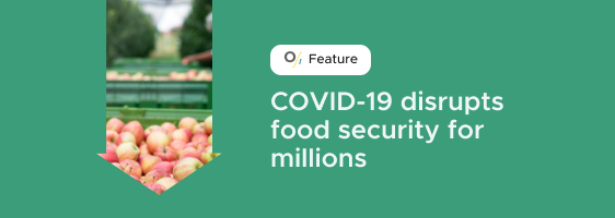 COVID-19 disrupts food security for millions